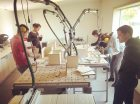 whout_woutmoreels_hout-workshops_Foto1
