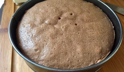 fertig gebackener Wiener Boden