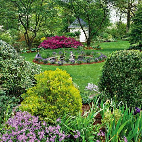 Rboles en tu jard n for Arboles ornamentales de jardin