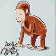 นิทานเรื่องสั้นสอนใจภาษาอังกฤษ เรื่อง The Monkey Prince