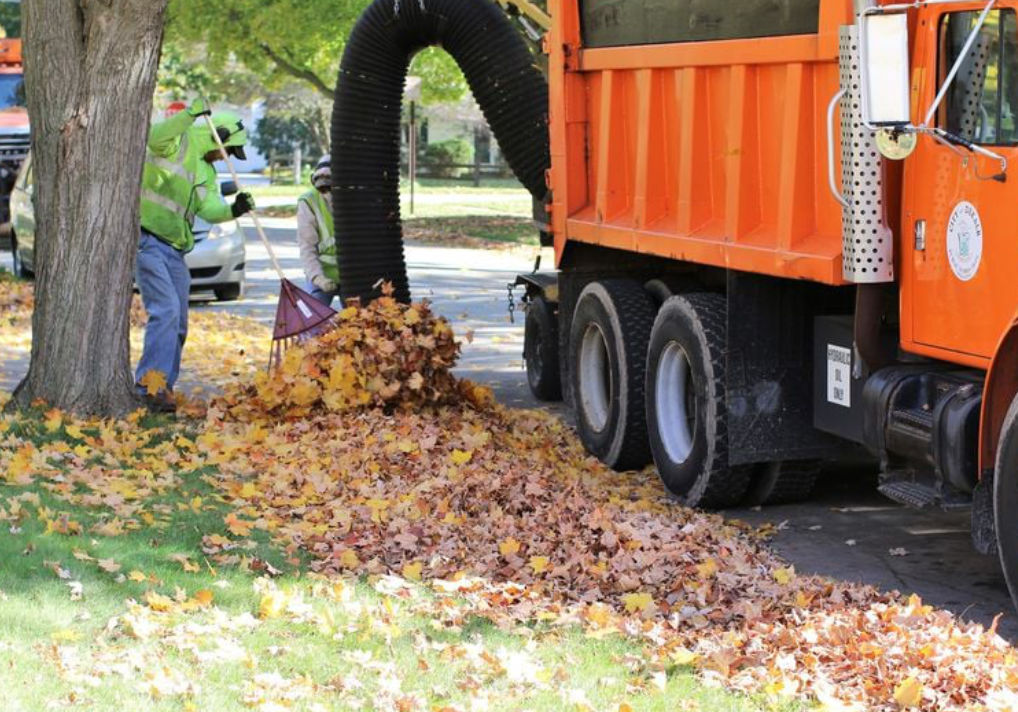 DeKalb's Annual Loose-Leaf Collection