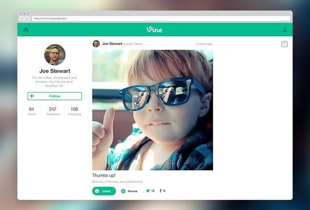 vine_web_profile