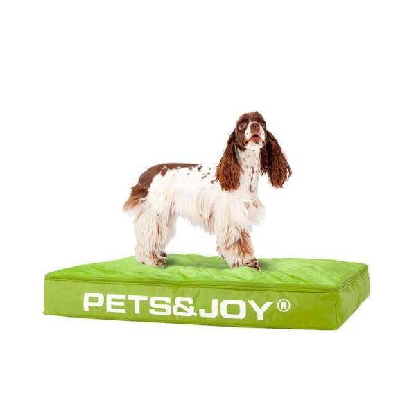 Sit&Joy Zitzak - Hond Kleur: Groen