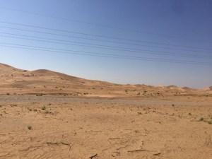 real-desert