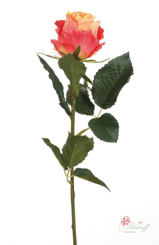 Rosa Rosen Bedeutung blumen zum valentinstag verschicken mit valentins rosa rosen ihre