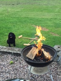 Delamere Logs | fire pits and chimineas tree logs for sale