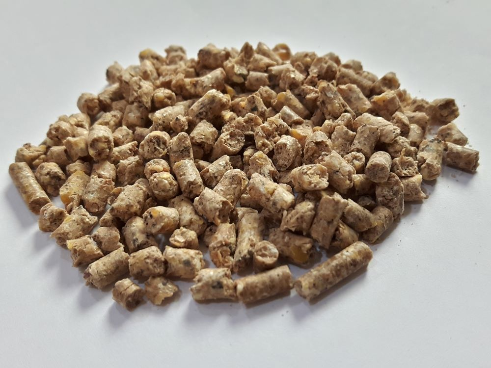 Chicken layers pellets