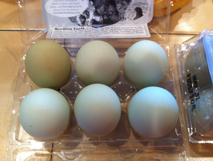 egg colours