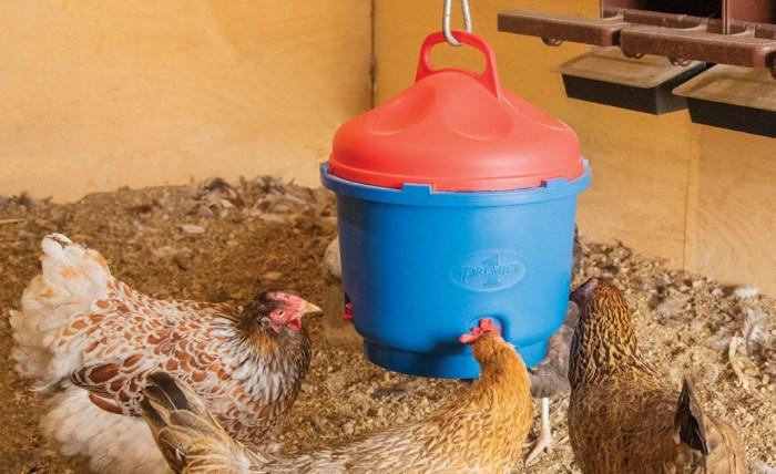 Alternatives to Heated Chicken Waterers