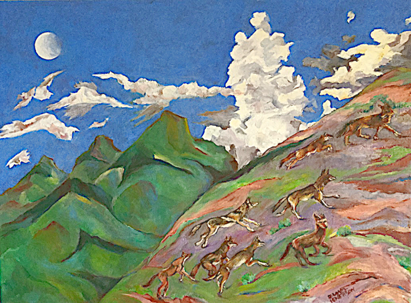 Coyote FootRace oil, 24