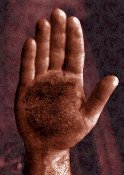Hairy Palm  Joseph DeLappe