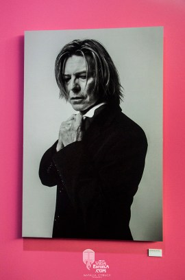 bowie_17