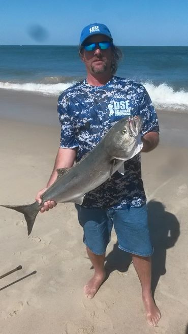 3Rs, bluefish, delaware, sussex county,atlantic ocean fish, yellow eyed devil, shark bait,