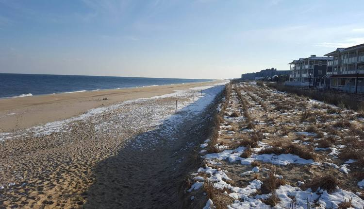 Bethany Beach 1/21/2015 at low tide