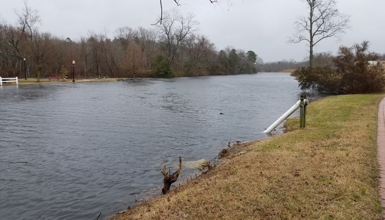 Broadkill river in Milton high tide