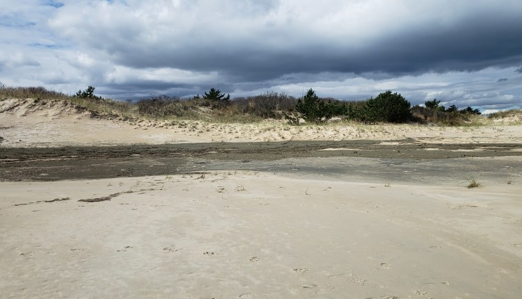 Areas in dunes filled in with water