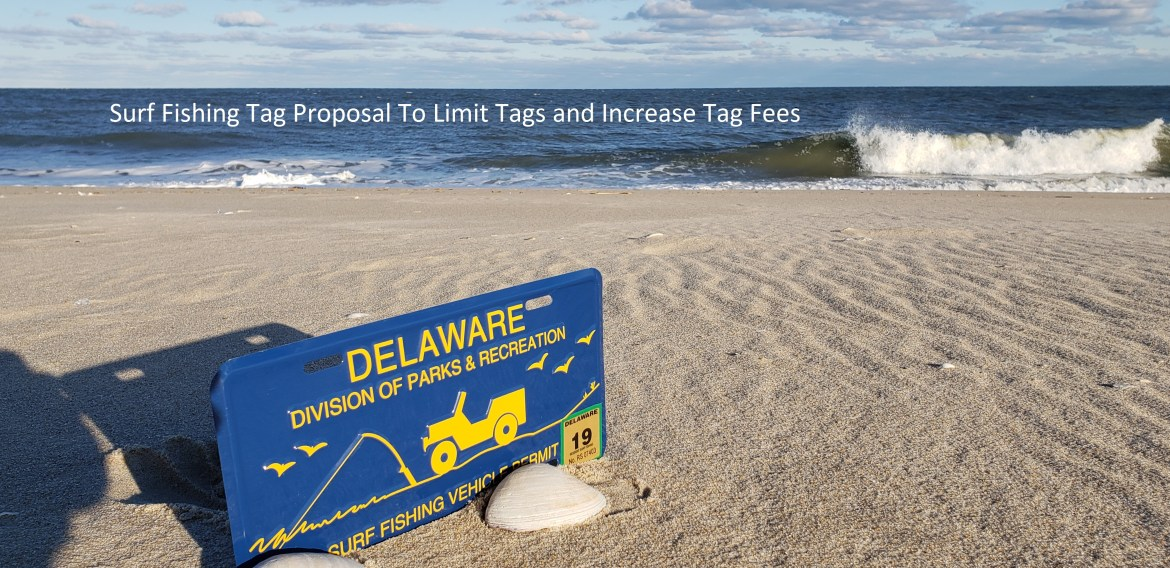 delaware state parks, surf fishing tags, sussex county