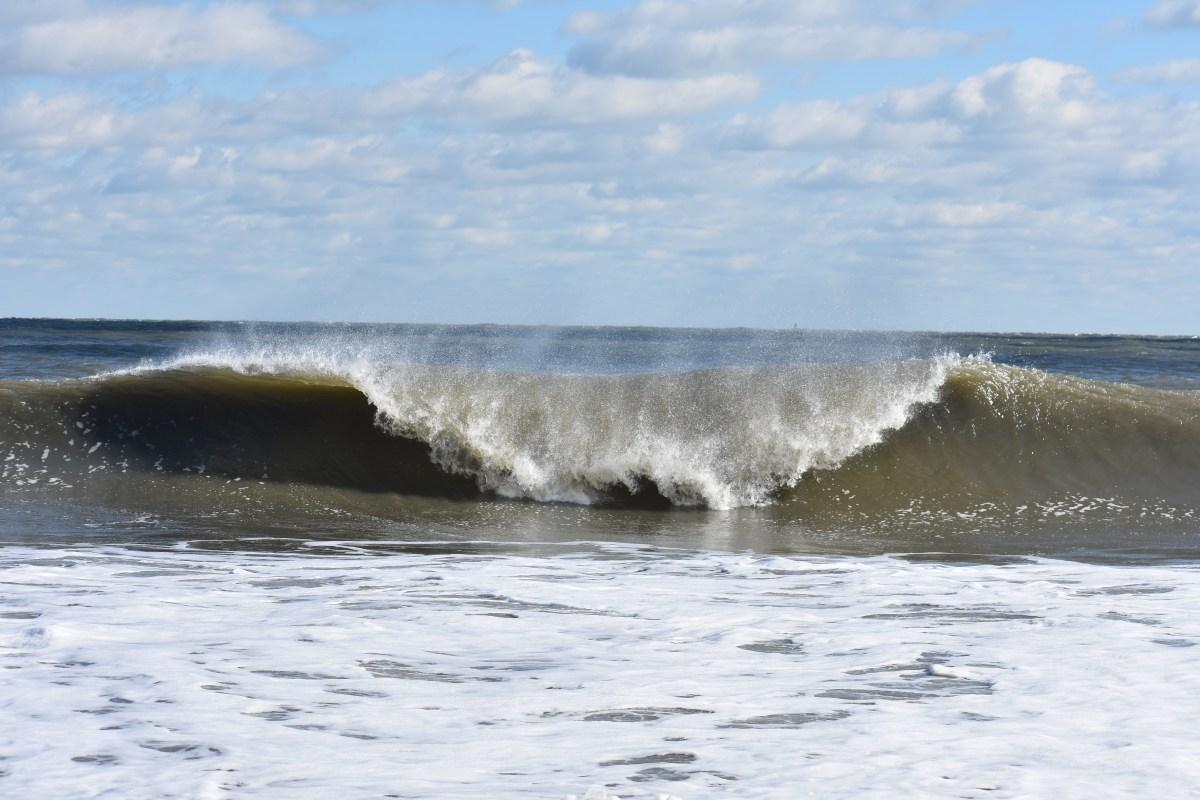 Mid-Atlantic Coastal Acidification Network Seeking ...