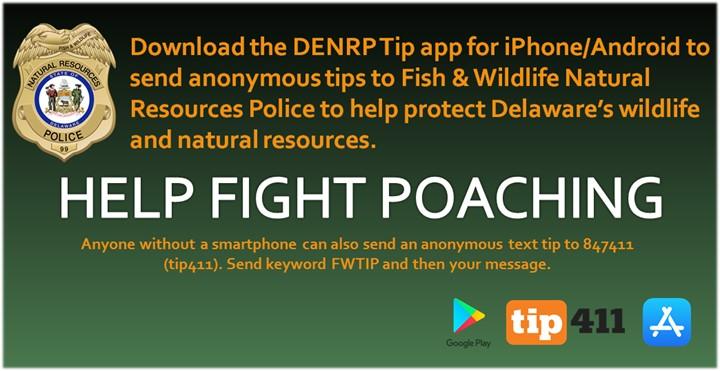 dnrec, enforcement app,