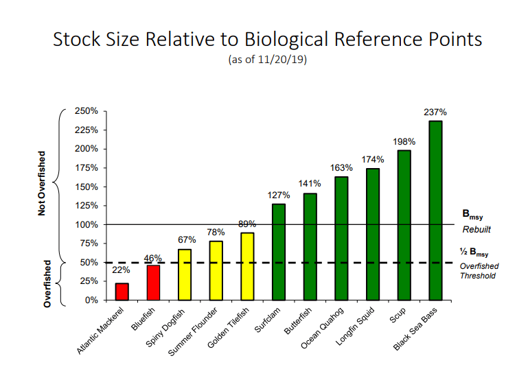 Stock Size Relative to Biological Reference Points, mafmc