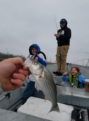 striped bass, rockfish, delaware, sussex county, broadkill river,