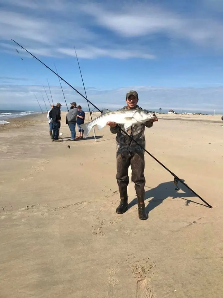 chincoteague, assateague, virginia side, rockfish, striped bass, surf fishing,