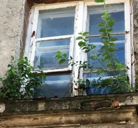 32_Fenster