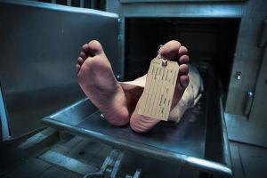 ¿Qué hacen los estudiantes de Medicina con los muertos?