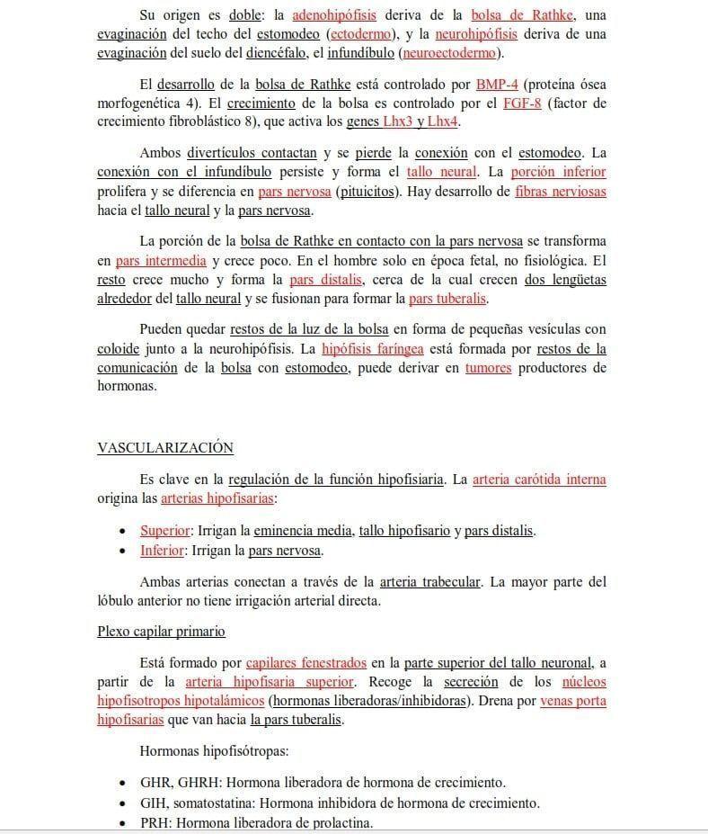 DEL CINE AL HOSPITAL Segundo de Medicina en la UCM: así se forma un médico en España.