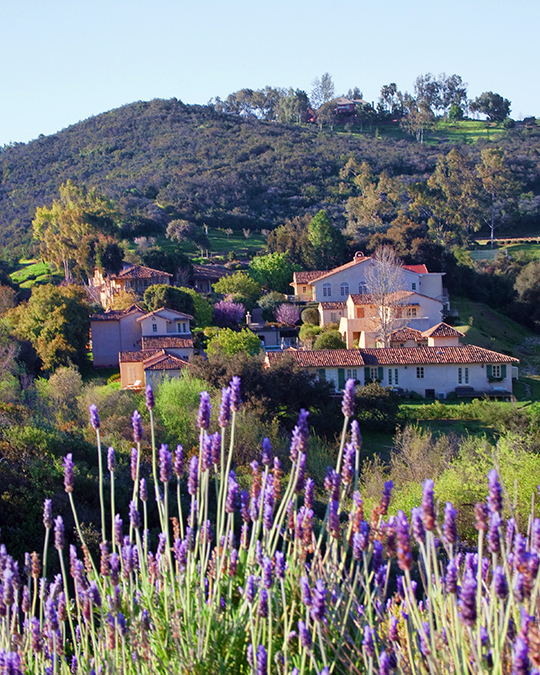 Landscape - Cal a Vie