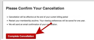 Netflix Cancellation