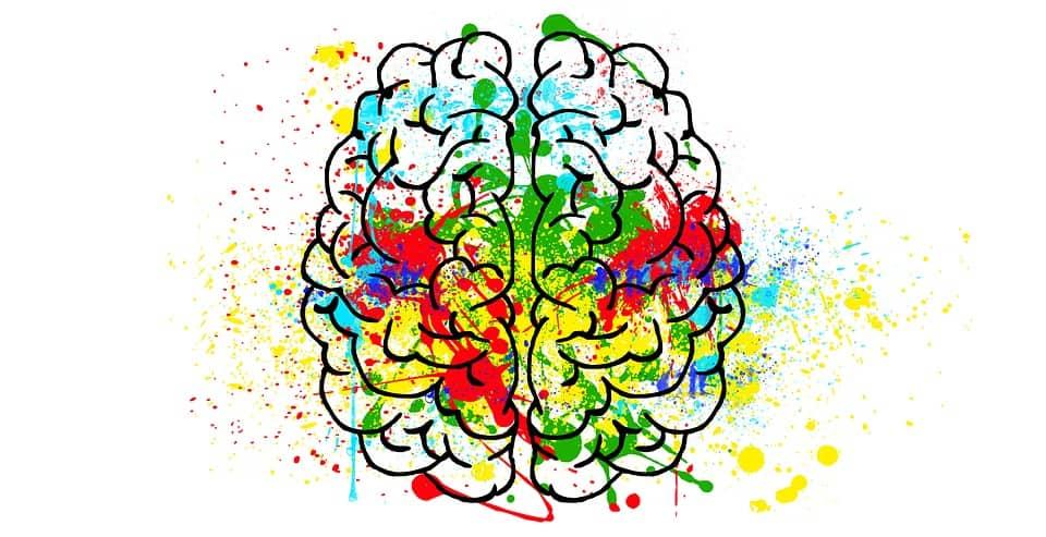 De invloed van voeding op de hersenen | 3 belangrijke voedingstoffen
