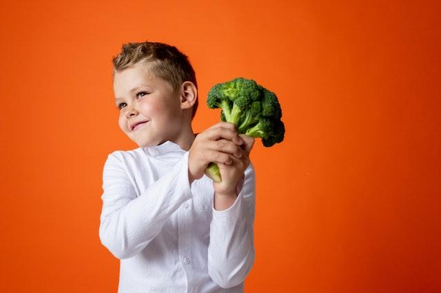 Brainfood, voedsel voor je brein