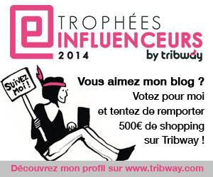 Trophées Inluenceurs 2014