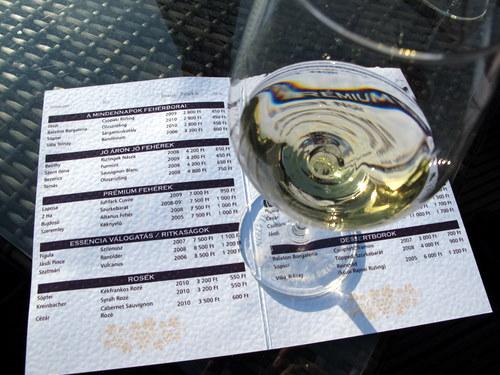 Weinprobe in Ungarn