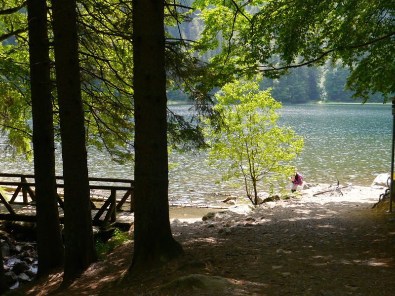Baden nicht, aber Picknicken ist erlaubt am Feldsee.
