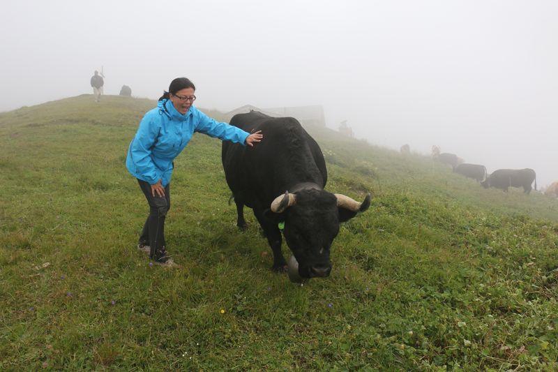 On Tour im Wallis (4): Chandolin und die schwarzen Schönheiten auf der Alp