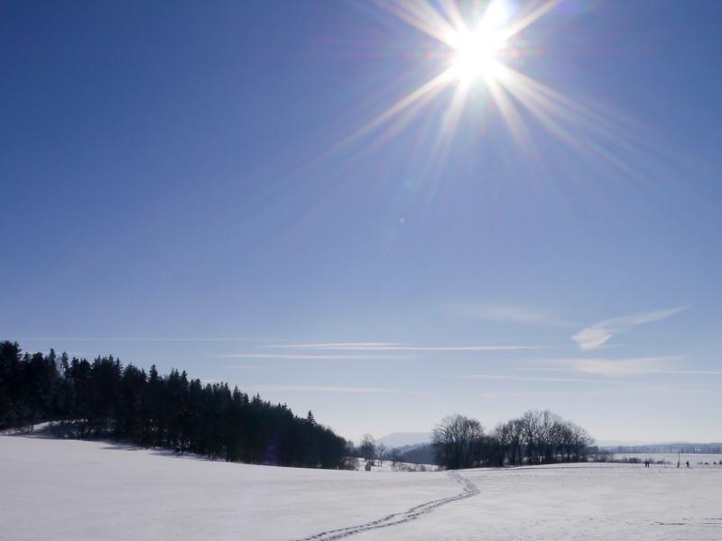 Wintermärchen: Sonnenschein und Glitzerschnee