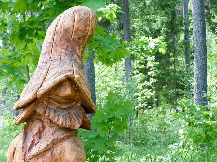 Wälder und Trolle im Nationalpark Laheema, Estland
