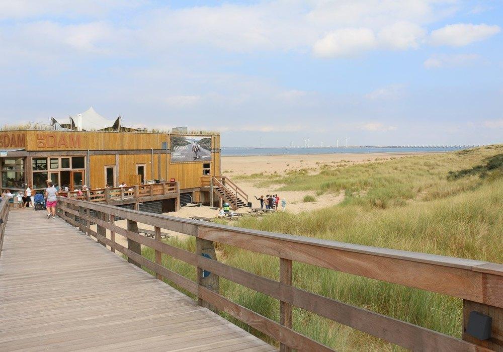 DeDam: Bester Newcomer des Jahres 2016 unter den Strandpavillons