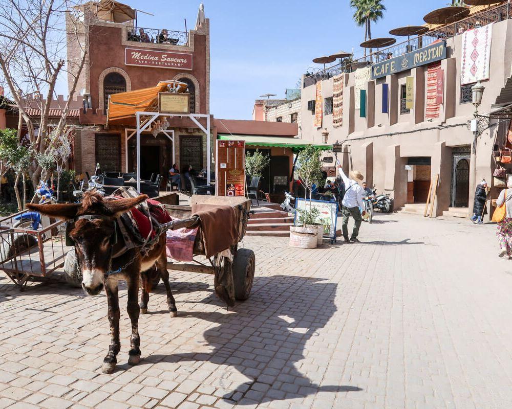 Beliebtes Transportmittel in Marrakesch: Eselkarren