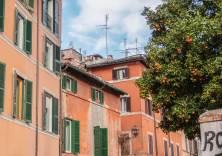 Orangen mit orangerote Fassaden in Trastevere