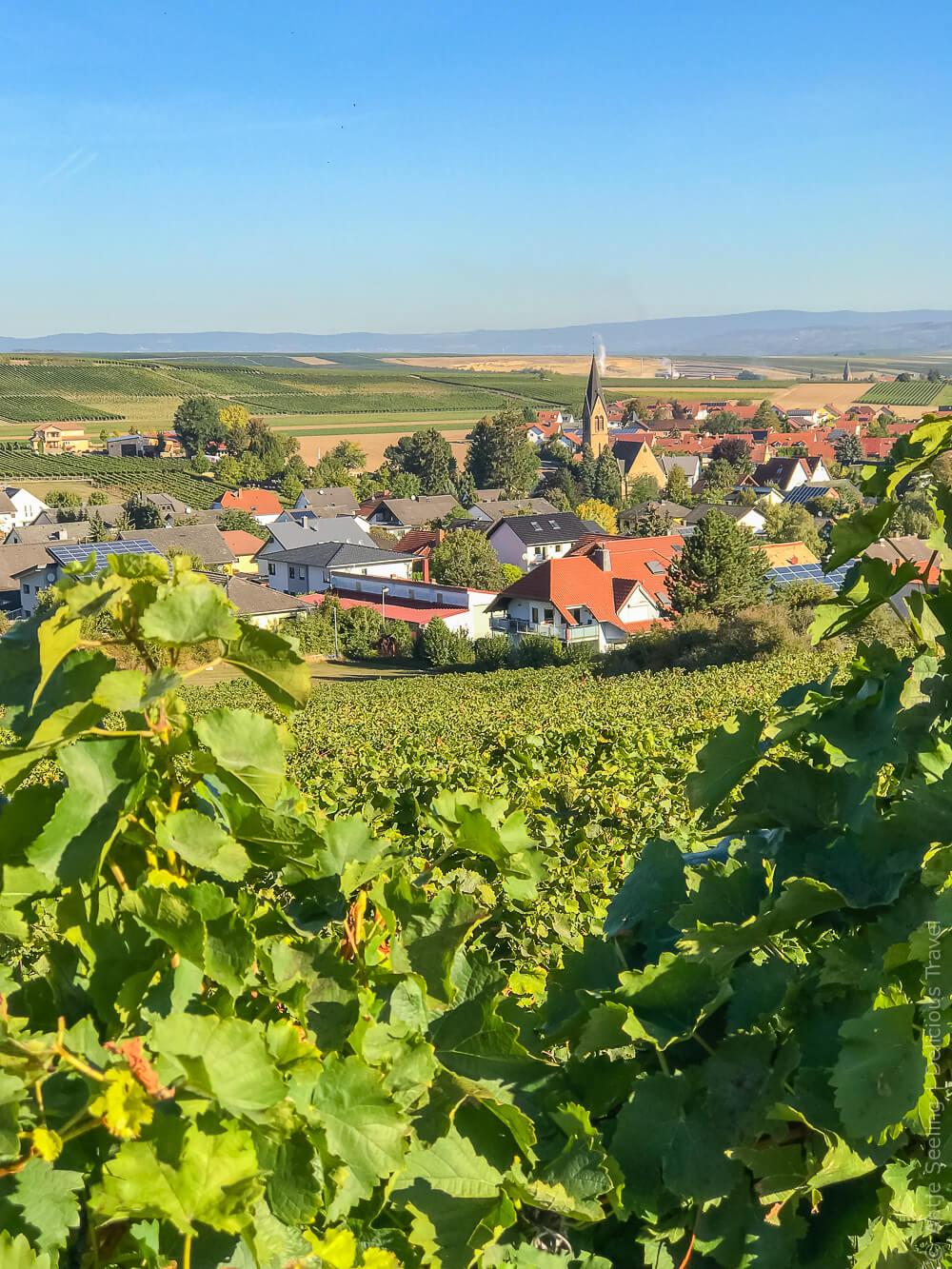 Siefersheim