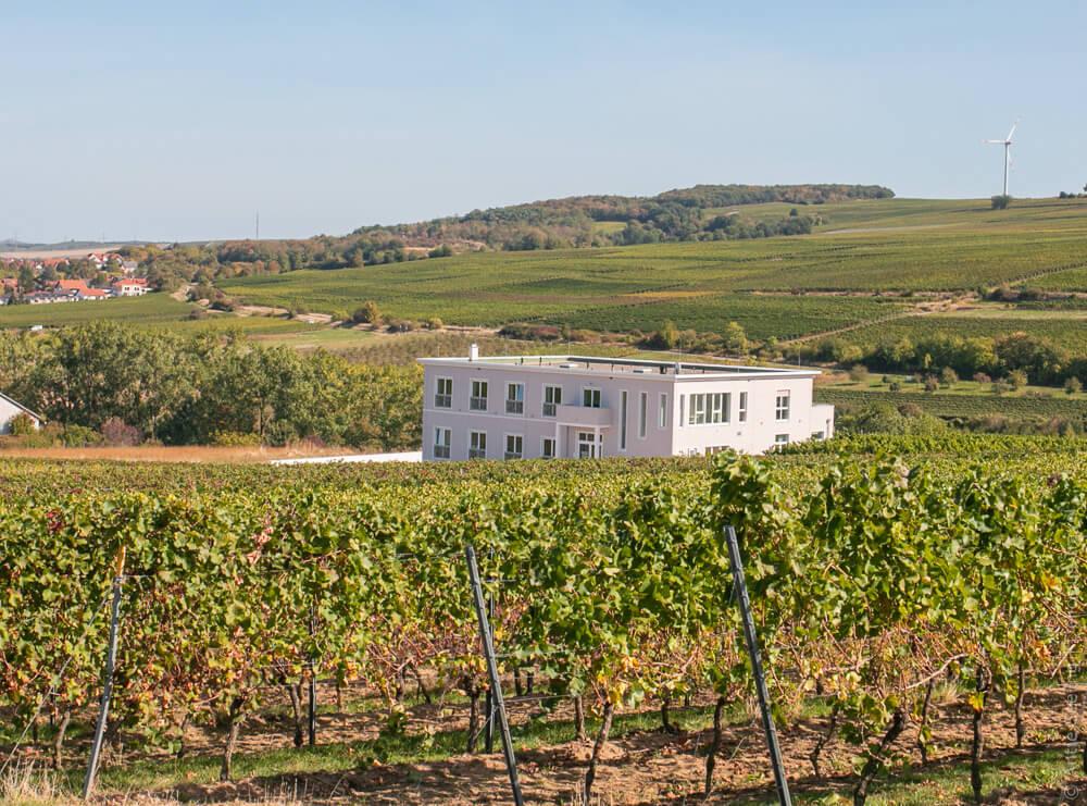 Winzerhotel am La Roche