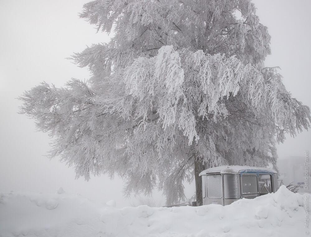 Winterstimmung auf dem Pfänder