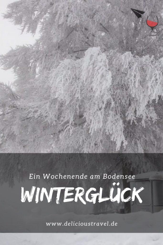 Winter am Bodensee