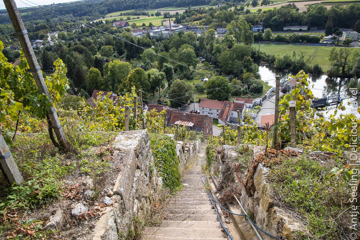 Schlossweinberg Vaihingen an der Enz