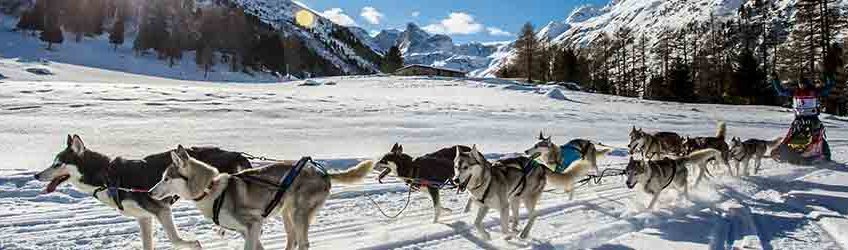 Editions Savoie Mont Blanc 2015-16
