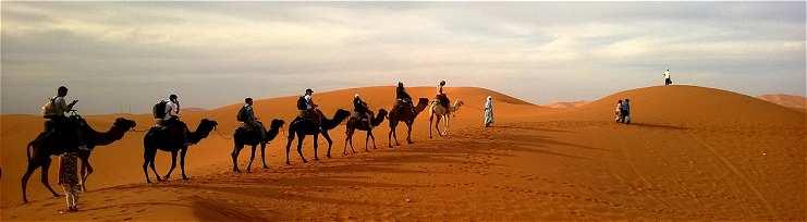 Bivouac dans le désert Marocain