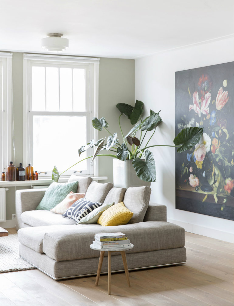 living room decor with plants flooring options for inspiring ideas